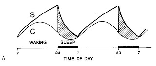 The 2-process model of sleep